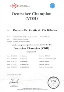 Dt Champion VDH