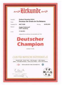 Dt Champion CfBrH