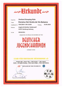 Dt Jugend-Champion CfBrH