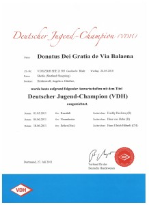 Dt Jugend-Champion VDH